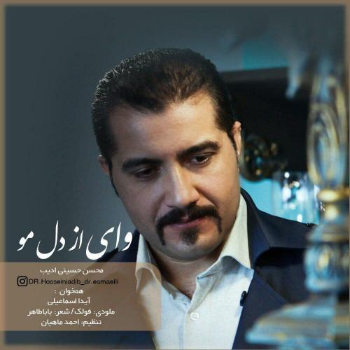 دانلود آهنگ محسن حسینی ادیب وای از دل مو