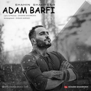 Shahin Shahrokh – Adam Barfi