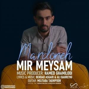 Mir Meysam Mardoneh