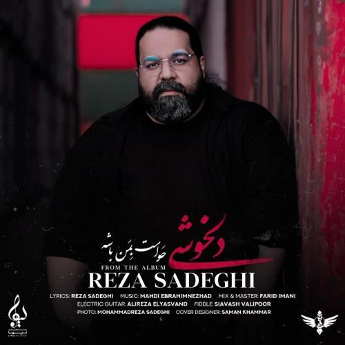 Reza Sadeghi Delkhoshi