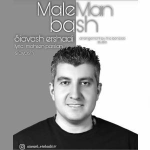 Siavash Ershadi Male Man Bash