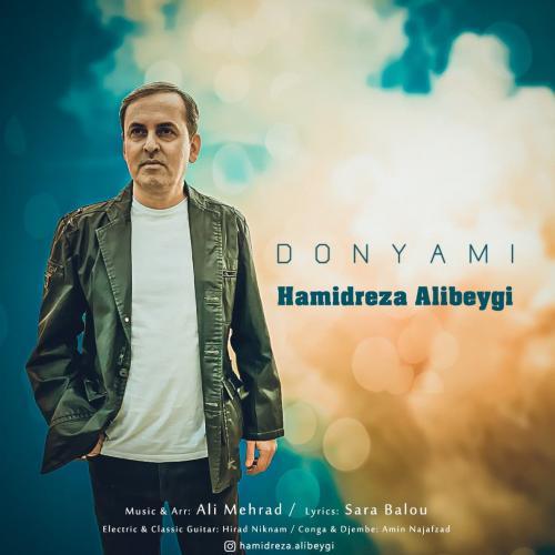 Hamidreza Alibeygi Donyami