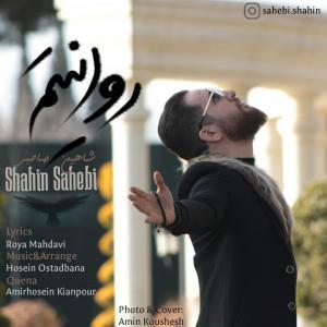Shahin Sahebi Ravanitam