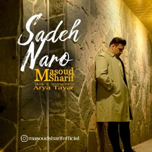 Masoud Sharif Sadeh Naro