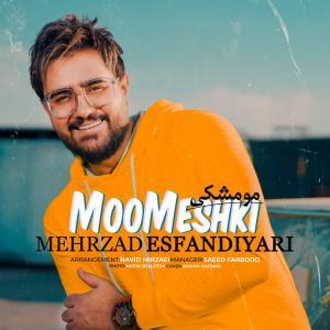 Mehrzad Esfandiyari Moo Meshki