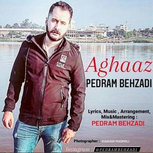 Pedram Behzadi Aghaaz