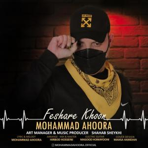 Mohammad Ahoora Feshare Khoon