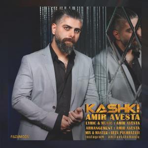 Amir Avesta Kashki