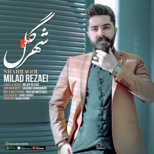 Milad Rezaei Shahragol