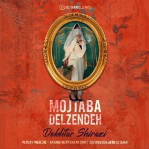 Mojtaba Delzendeh Dokhtar Shirazi