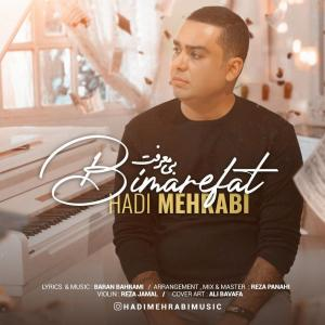 Hadi Mehrabi  Bimarefat