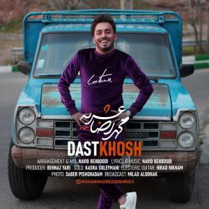 Mohammadreza Oshrieh Dastkhosh