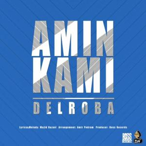 Amin Kami Delroba
