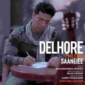 Mojtaba Saneiee Delhore