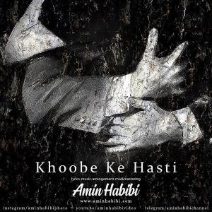 Amin Habibi Khoobe Ke Hasti