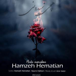 Hamzeh Hematian Hichi Nemidoni