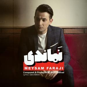 Meysam Faraji Namandi