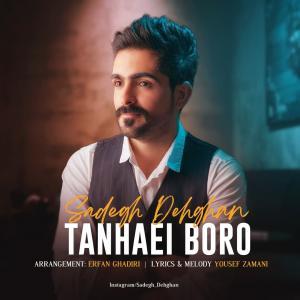 Sadegh Dehghan Tanhaei Boro