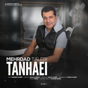 Mehrdad Talebi – Tanhaei