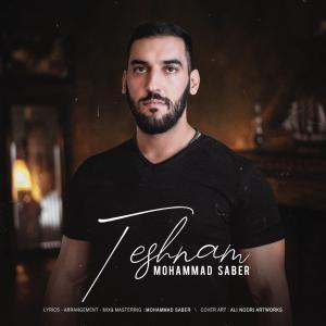 Mohammad Saber Teshnam