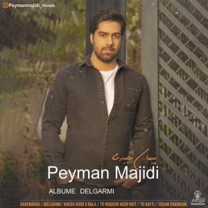 Peyman Majidi Daronadar