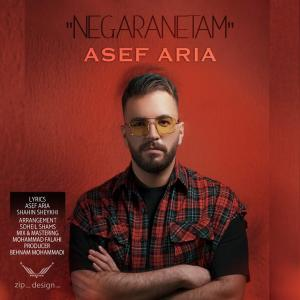 Asef Aria Negaranetam