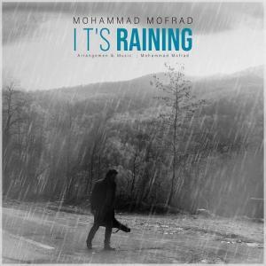 Mohammad Mofrad It\'s Raining