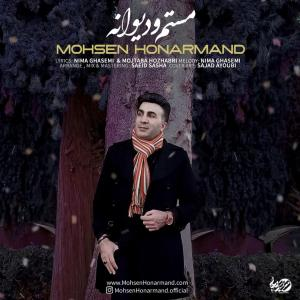 Mohsen Honarmand Mastam o Divaneh