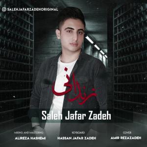Saleh JafarZadeh Zendooni