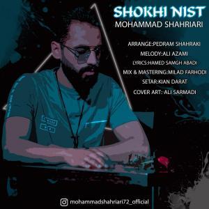 Mohammad Shahriari Shokhi Nist