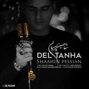 Shaahin Pessian Del Tanha