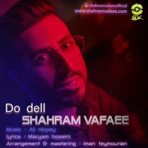 Shahram Vafaee Do Dell