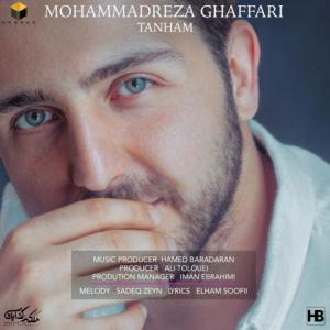 Mohammadreza Ghaffari Tanham