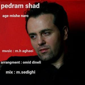 Pedram Shad Age Mishe Naro