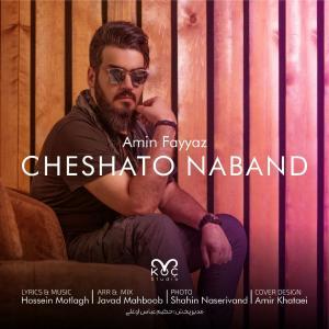 Amin Fayyaz Cheshato Naband