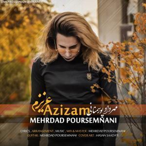 Mehrdad Poursemnani Azizam