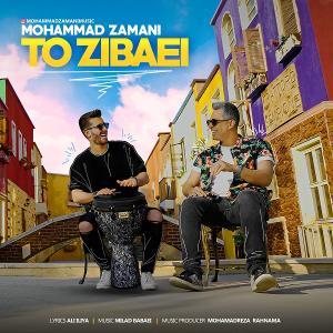 Mohammad Zamani To Zibaei