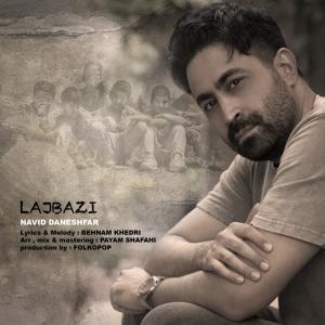 Navid Daneshfar Lajbazi
