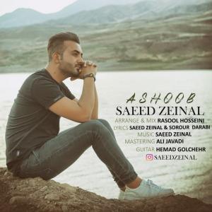 Saeed Zeinal Ashoob