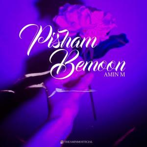 Amin M Pisham Bemoon