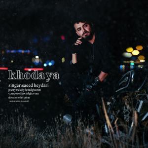 Saeed Heydari Khodaya