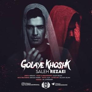 Saleh Rezaei Golaye Khoshk