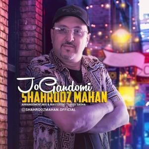 Shahrooz Mahan Jo Gandomi