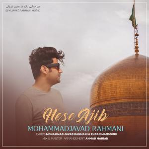 Mohammad Javad Rahmani Hese Ajib