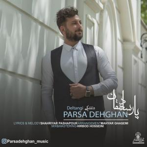 Parsa Dehghan Deltangi