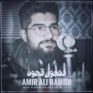 Amir Ali Hamidi Fenjoon e Qahve