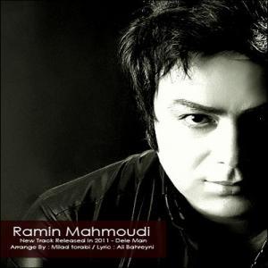 Ramin Mahmoodi – Dele Man