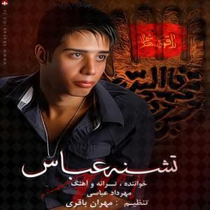 Mehrdad Abbasi – Teshne Abbas