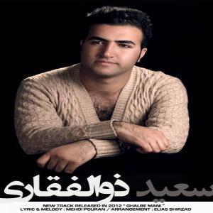 Saeed Zolfaghari – Ghalbe Mani