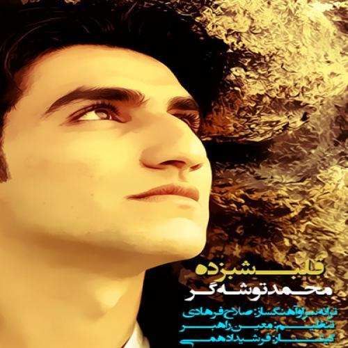 Mohammad Tooshegar – Qalb Shabzadeh
